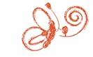 logo-bcg2